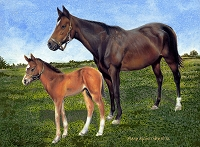 Horse & Foal (Brown Horse & Foal)- The Irish National Stud